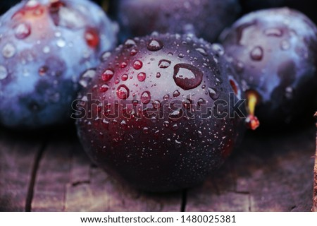 background of beautiful home plums #1480025381
