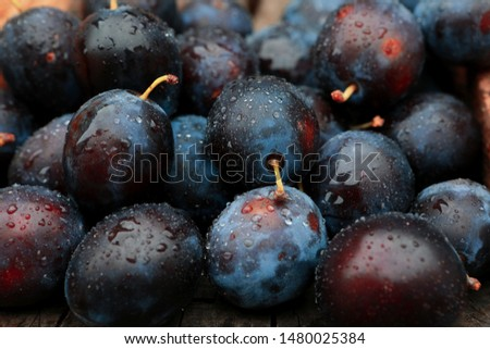 background of beautiful home plums #1480025384