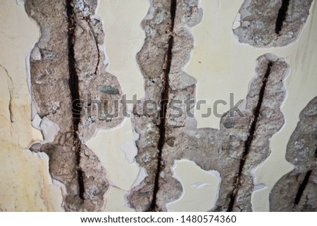 Cracking mortar saw the rusted steel #1480574360