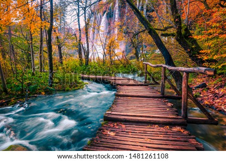 Popular touristic wooden bridge in the colorful autumn deep forest. Wooden promenade with clean brook and spectacular waterfalls, Plitvice National Park, Croatia, Europe Royalty-Free Stock Photo #1481261108