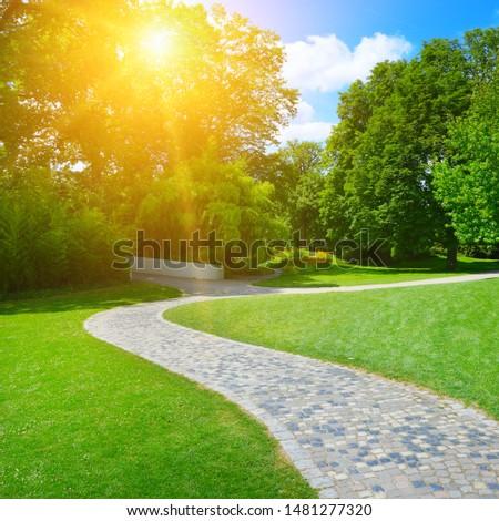 Sunrise beam in beautiful park #1481277320