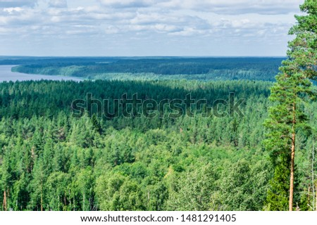 Aerial view of coniferous and mixed forest and distant river Royalty-Free Stock Photo #1481291405