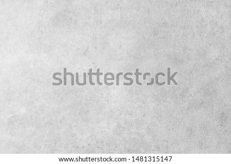 Plaster or Gypsum wall texture. Concrete background for interior design of buildings or websites and loft office style #1481315147