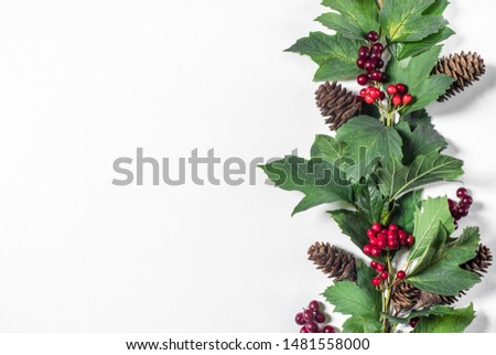 New Year and Christmas decorative ornament border, branch with red berries, green leaves and fir cones with space for text on white background #1481558000
