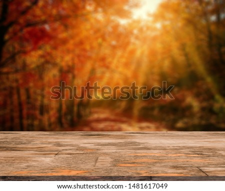 Wood table in autumn landscape with empty copy space for product display. #1481617049