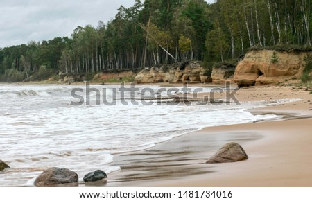 Storming sea with a thundercloud above, a lone birch tree on a the edge of a cliff, beautiful rugged coastline with waves crashing against the cliffs, Veczemju cliffs, Latvia #1481734016