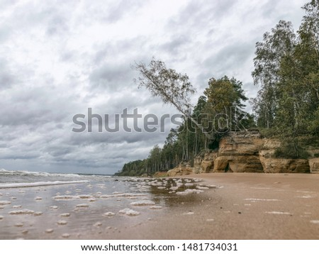 Storming sea with a thundercloud above, a lone birch tree on a the edge of a cliff, beautiful rugged coastline with waves crashing against the cliffs, Veczemju cliffs, Latvia #1481734031