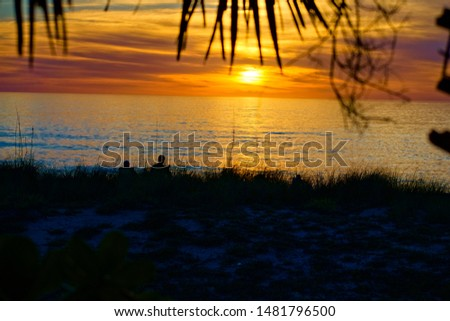 Landscape. Silhouette of people enjoying sunset on the beach. Created in Venice Beach, FL, 01/02/2019 #1481796500