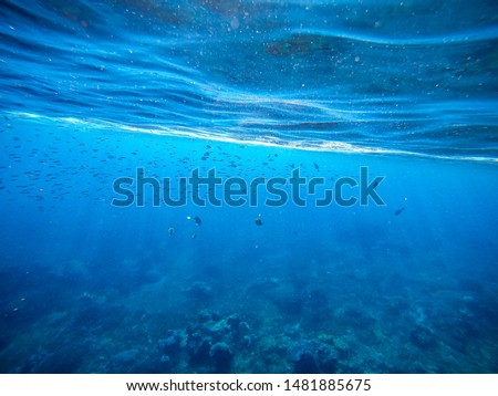 Under the deep sea on the island of Bali #1481885675