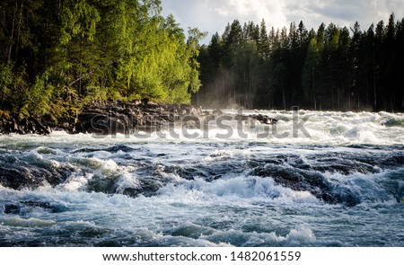 The biggest and strongest rapids in the north region (Storforsen, Sweden) Royalty-Free Stock Photo #1482061559