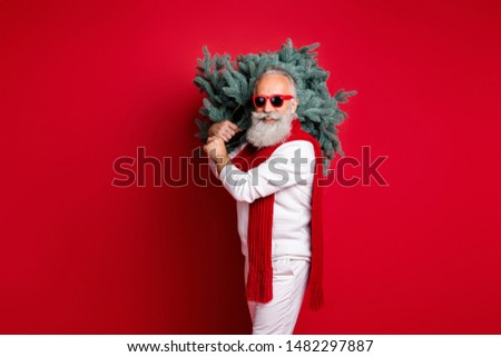 Portrait of his he nice handsome virile masculine strong content cheerful cheery gray-haired man wearing pullover sweater holding celebratory festal tree isolated on bright vivid shine red background #1482297887