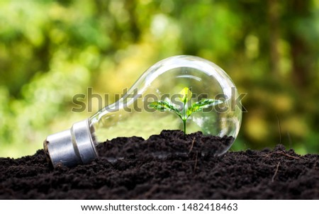 Tree grows in light bulbs, energy-saving and environmental concepts on Earth Day. #1482418463