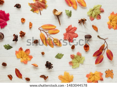 Flat lay autumn leaves on wooden background #1483044578