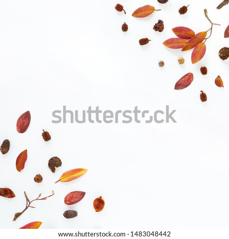 Flat lay autumn leaves with copy space #1483048442
