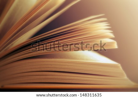 View of book pages #148311635
