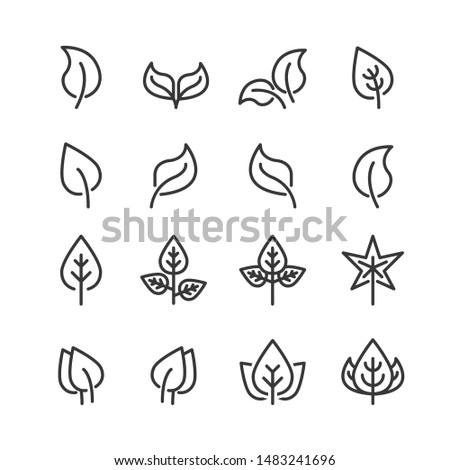leaf icon line vector illustration #1483241696