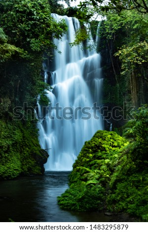 Waterfall landscape. Focus on waterfall, blurred leaves. Beautiful waterfall in tropical rainforest. Jungle river. Adventure in Asia. Cemara waterfall in Bali. Slow shutter speed, motion photography. #1483295879