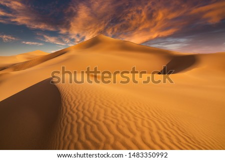 Sunset over the sand dunes in the desert. Aerial view #1483350992
