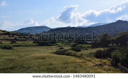 Flora of Turkey in Gumusluk town. Landscapes of Aegean Turkish Riviera. Bodrum peninsula #1483480091