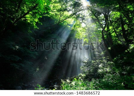 Summer Falls, Yurihonjo City, Akita #1483686572