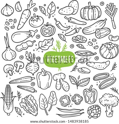 Vegetables doodle drawing collection. vegetable such as carrot, corn, ginger, mushroom, cucumber, cabbage, potato, etc. Hand drawn vector doodle illustrations in black isolated over white background. Royalty-Free Stock Photo #1483938185