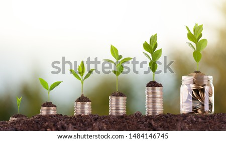 Growing Money - Plant On Coins - Finance growth And Investment Concept  #1484146745