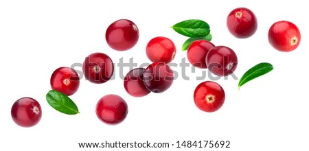 Cranberry isolated on white background with clipping path, berry collection, fresh falling cranberries with leaves #1484175692