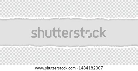 Ripped squared horizontal paper strips for text or message. Torn paper edge. Torn paper stripes. Vector illustration. #1484182007