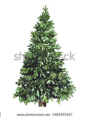 Watercolor green Christmas tree on white background. Isolated hand drawn elements for prints, cards, templates