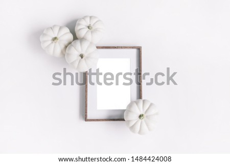 Minimal frame mockup with white pumpkins isolated on white background top view.