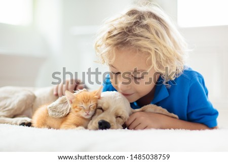 Child with baby dog and cat. Kids play with puppy and kitten in a basket. Little boy and American cocker spaniel on bed at home. Pets at home. Animal care. #1485038759