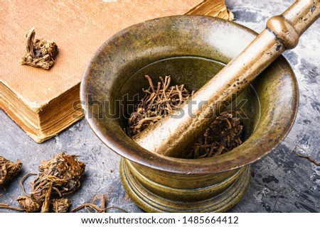 Dried Valerian roots in old bronze mortar.Valerian root for medical use #1485664412