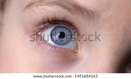 Closeup of blue child eye, concept of genetics inherited traits, innocent look #1485684563