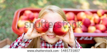 Girl with Apple holding in front of her face in the Apple Orchard. Beautiful Girl Eating Organic Apple in the Orchard. Harvest Concept. Garden, Toddler eating fruits at fall harvest. Apple pi #1485731807