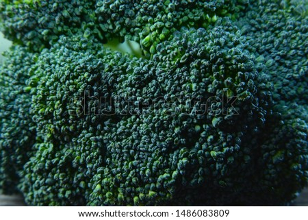 Macro photo green fresh vegetable broccoli. Image green fresh organic broccoli. Stock photo green cabbage broccoli #1486083809