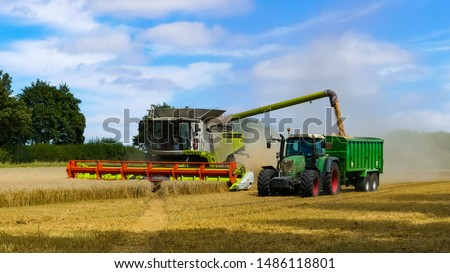 Tractor with trailer working in tandem alongside a working combine harvester discharging grain from uploader in an English cornfield. Dust clouds. Landscape image with space for text. Oxfordshire. #1486118801