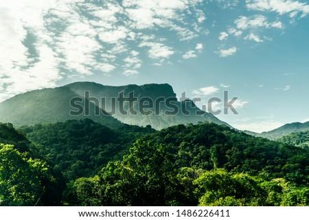 Santa Catarina Coast Hills, Brazil #1486226411