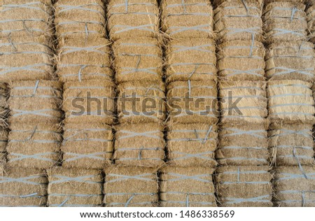 Dry Hay bales. Hay bales are stacked in large stacks. Harvesting in agriculture.Bales of hay. Hay bales are stacked on the farm in large stacks. Harvesting in agriculture #1486338569