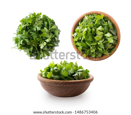 Parsley isolated on white background. Top view. Parsley leaves with copy space for text. Herbs isolated on white. Parsley leaves on white background.  #1486753406
