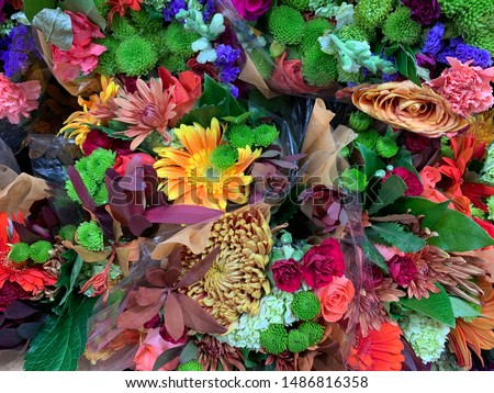 Variety of bright colorful cut flower bouquets. Multi colored flowers wallpaper background #1486816358