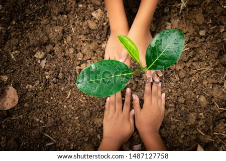 Planting trees, planting hands, planting trees, planting soil, saving earth and reducing global warming. #1487127758