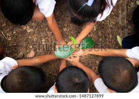 Planting trees, planting hands, planting trees, planting soil, saving earth and reducing global warming. #1487127899