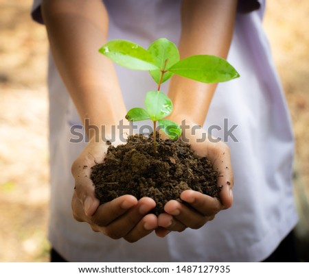 Planting trees, planting hands, planting trees, planting soil, saving earth and reducing global warming. #1487127935