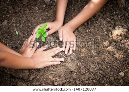 Planting trees, planting hands, planting trees, planting soil, saving earth and reducing global warming. #1487128097