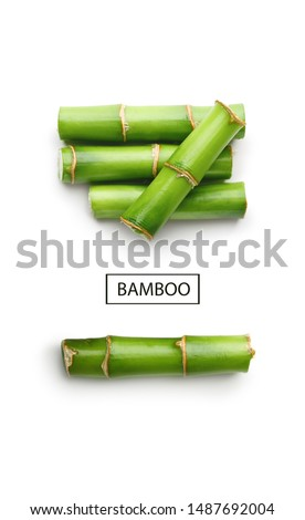 Branches of bamboo isolated on white background #1487692004