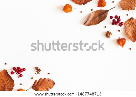 Autumn composition. Dried leaves, flowers, rowan berries on white background. Autumn, fall, thanksgiving day concept. Flat lay, top view, copy space #1487748713