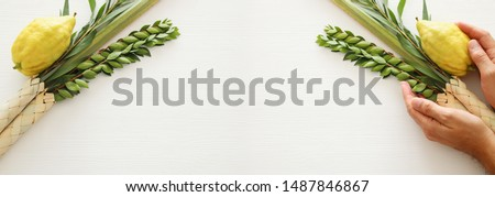 Jewish festival of Sukkot. Traditional symbols (The four species): Etrog, lulav, hadas, arava #1487846867