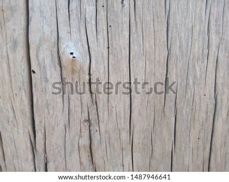 grunge wood with insect holes background  #1487946641