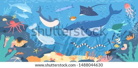 Fish and wild marine animals in ocean. Sea world dwellers, cute underwater creatures, coral reef inhabitants in their natural habitat, undersea fauna of tropics. Flat cartoon vector illustration. #1488044630
