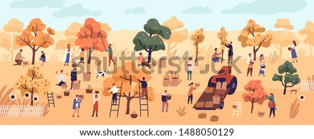 Smiling people gathering fruits in orchard or at farm. Cute happy young men and women picking apples in garden. Autumn harvest, seasonal agricultural work. Flat cartoon colorful vector illustration. #1488050129